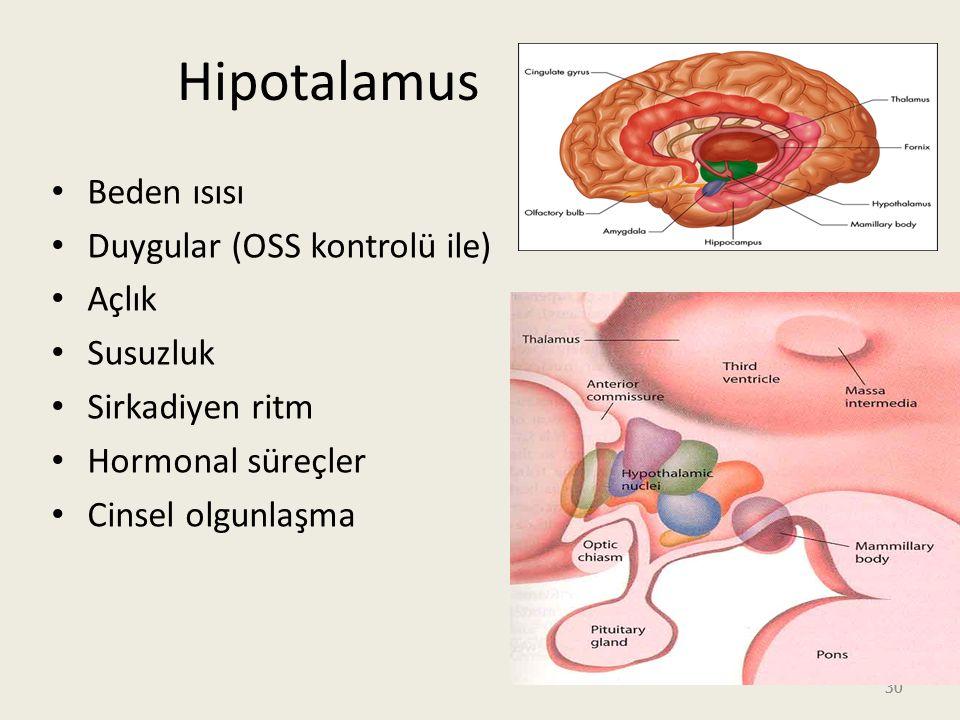Hipotalamus Beden ısısı Duygular (OSS kontrolü ile) Açlık Susuzluk