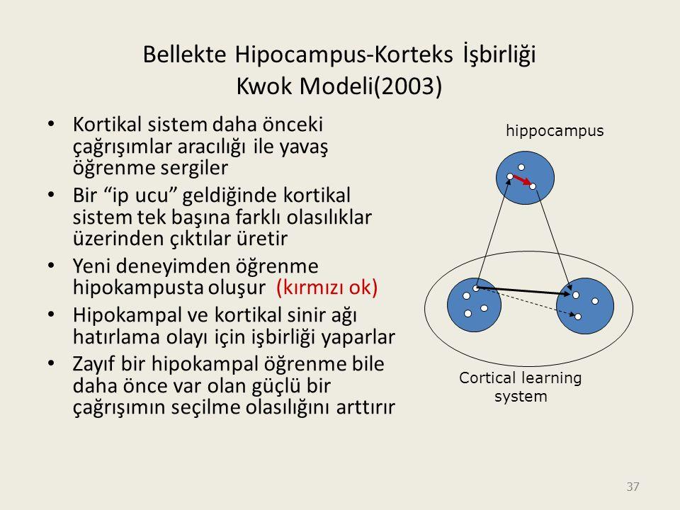 Bellekte Hipocampus-Korteks İşbirliği Kwok Modeli(2003)