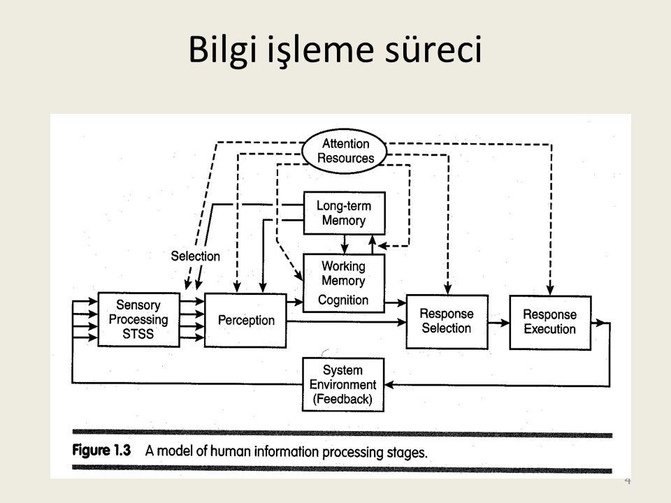 Bilgi işleme süreci 4 4