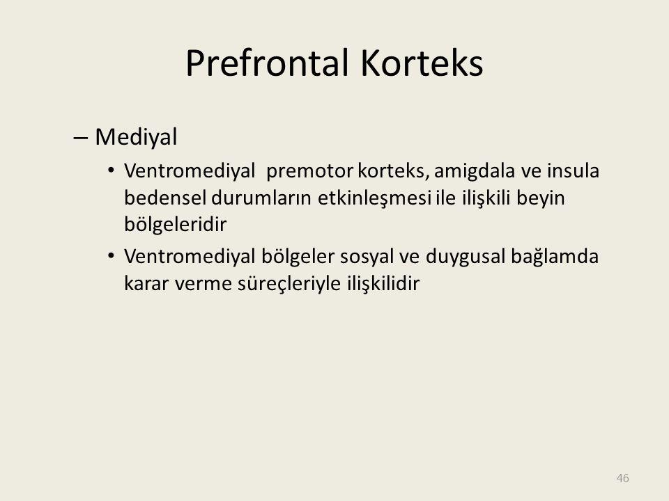 Prefrontal Korteks Mediyal