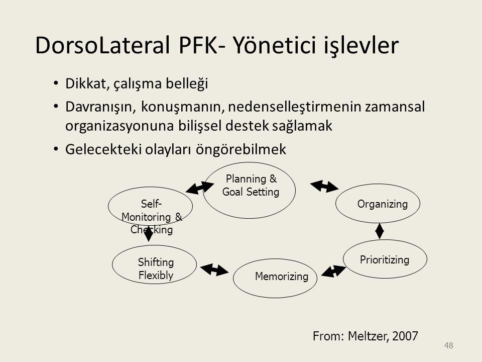 DorsoLateral PFK- Yönetici işlevler