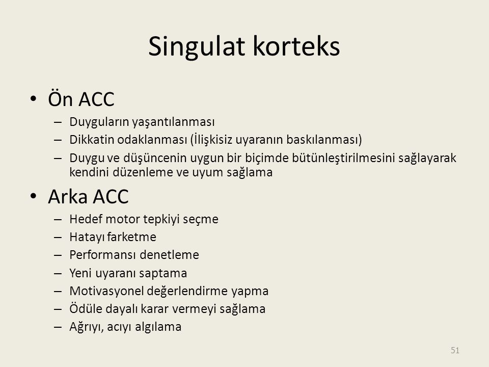 Singulat korteks Ön ACC Arka ACC Duyguların yaşantılanması