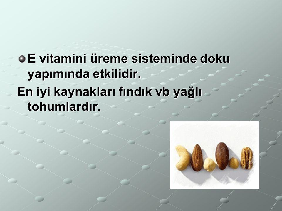 E vitamini üreme sisteminde doku yapımında etkilidir.
