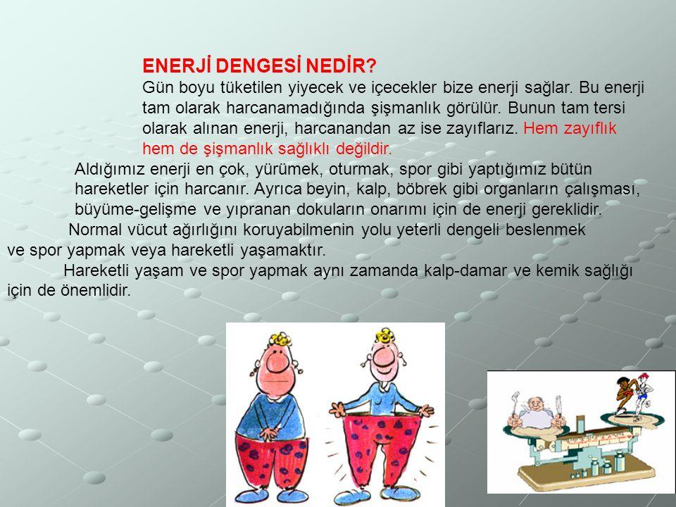 ENERJİ DENGESİ NEDİR