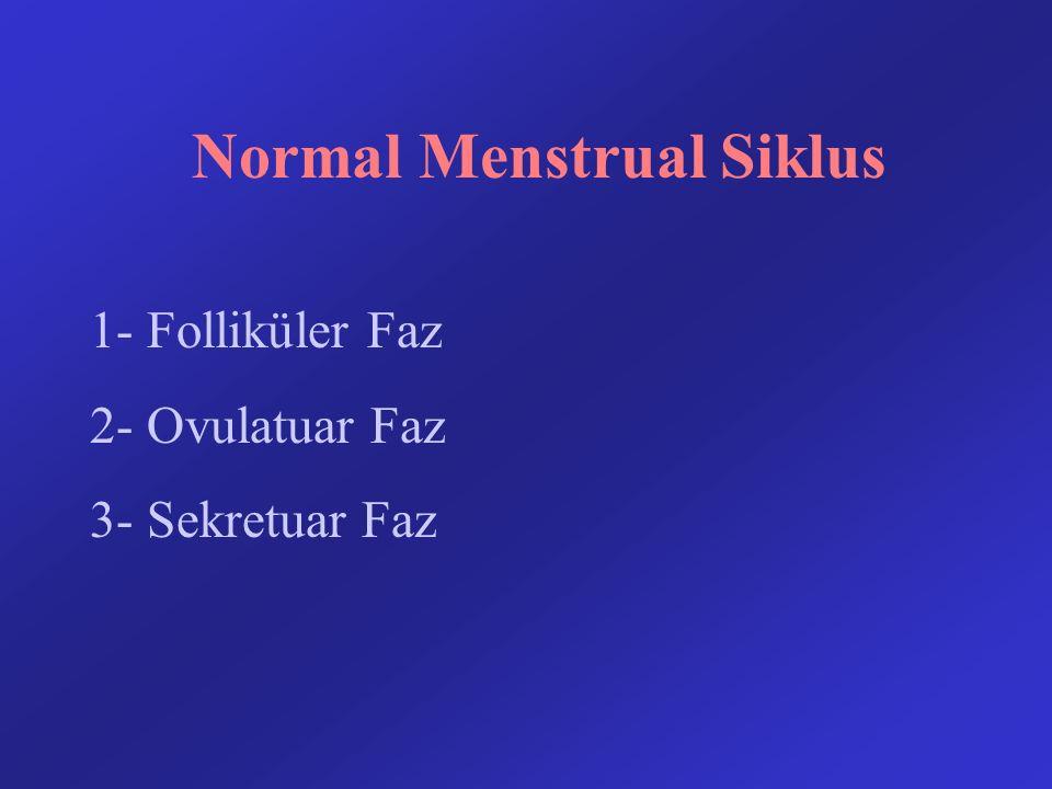 Normal Menstrual Siklus