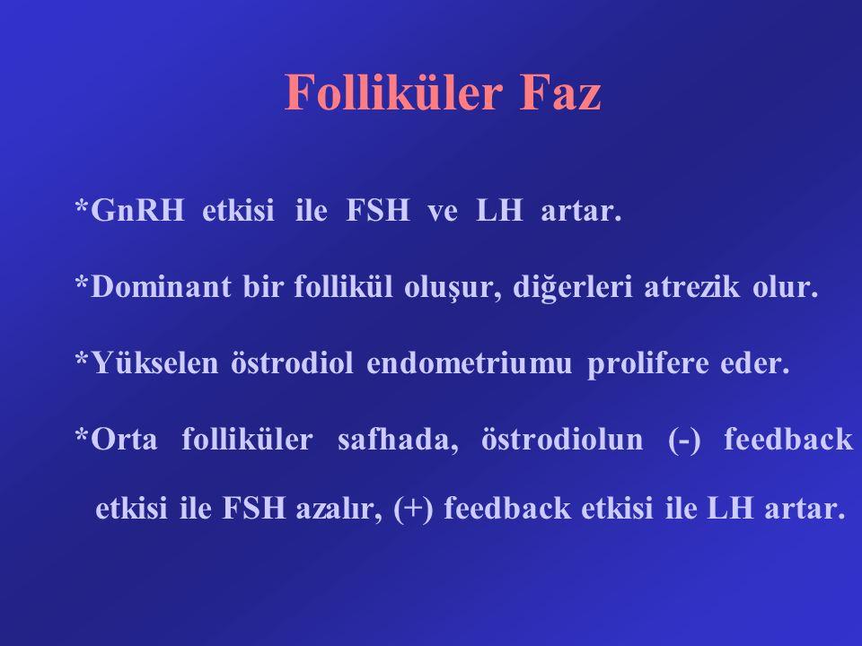 Folliküler Faz *GnRH etkisi ile FSH ve LH artar.