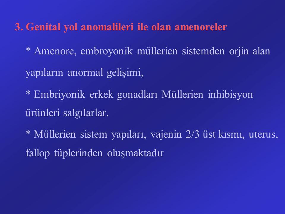 3. Genital yol anomalileri ile olan amenoreler