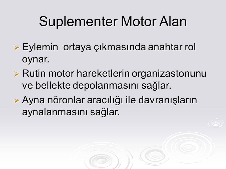 Suplementer Motor Alan