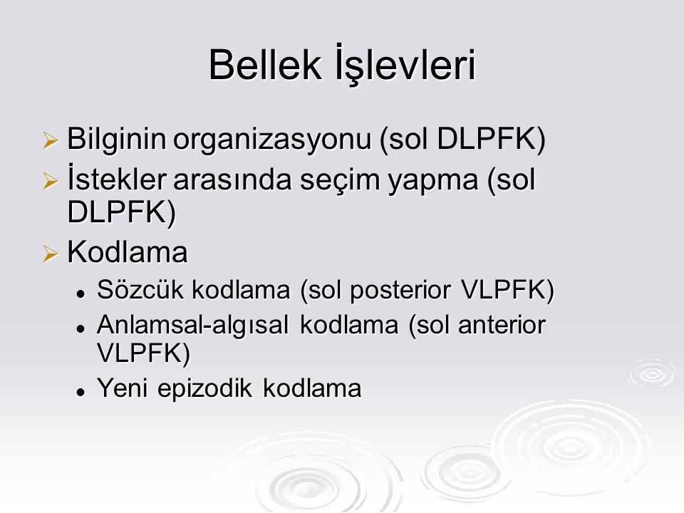 Bellek İşlevleri Bilginin organizasyonu (sol DLPFK)