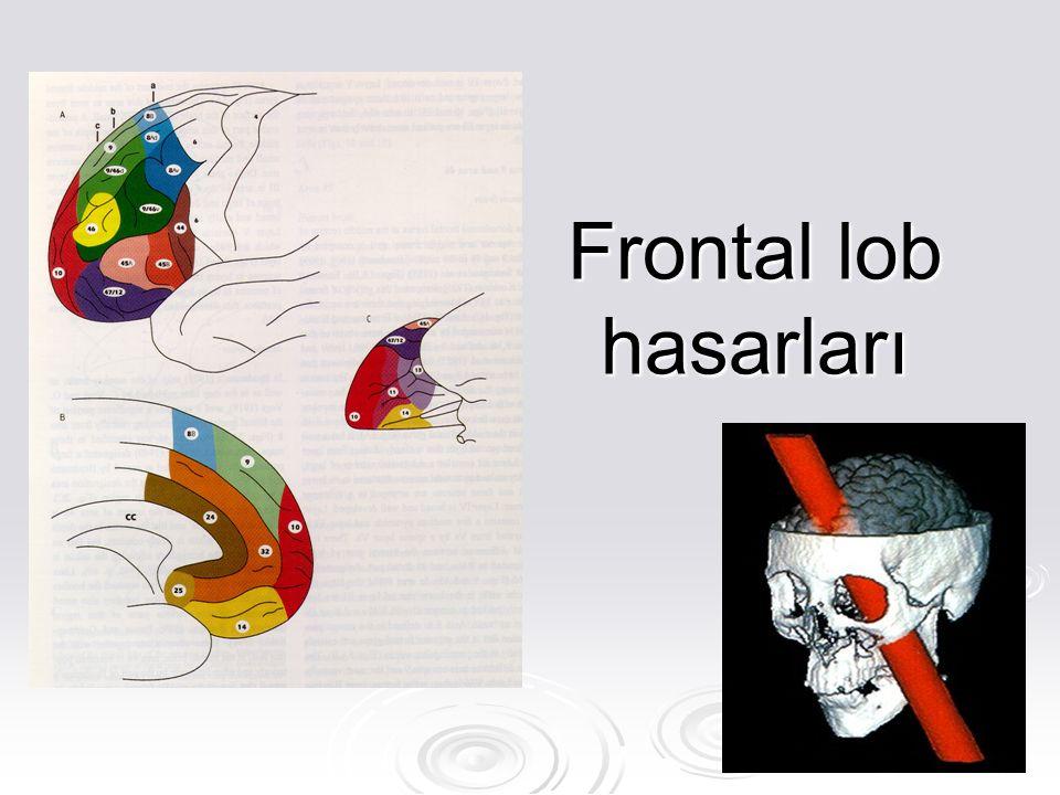 Frontal lob hasarları