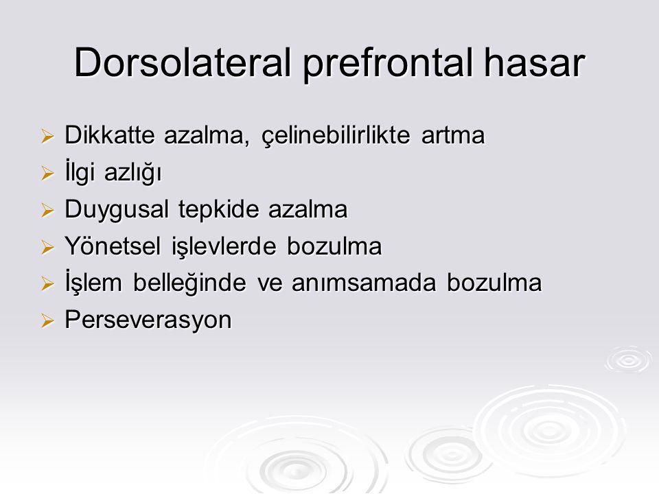 Dorsolateral prefrontal hasar