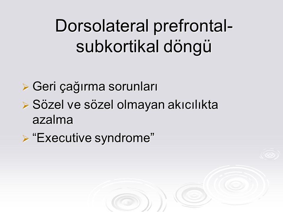 Dorsolateral prefrontal-subkortikal döngü