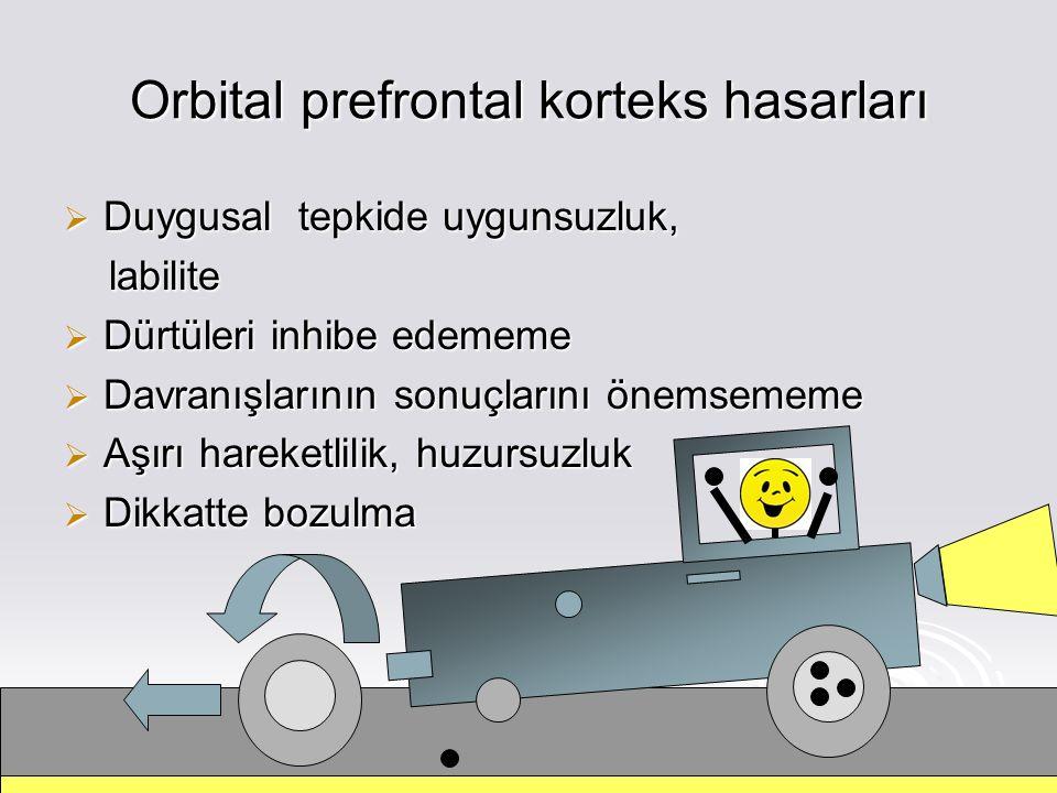 Orbital prefrontal korteks hasarları