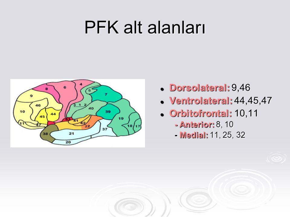 PFK alt alanları Dorsolateral: 9,46 Ventrolateral: 44,45,47