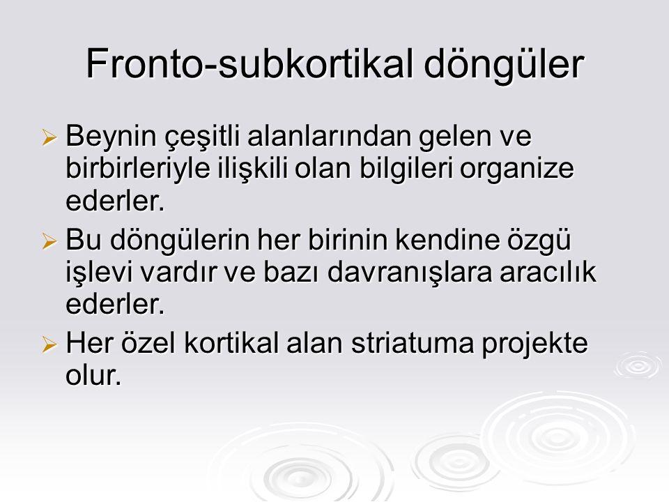 Fronto-subkortikal döngüler