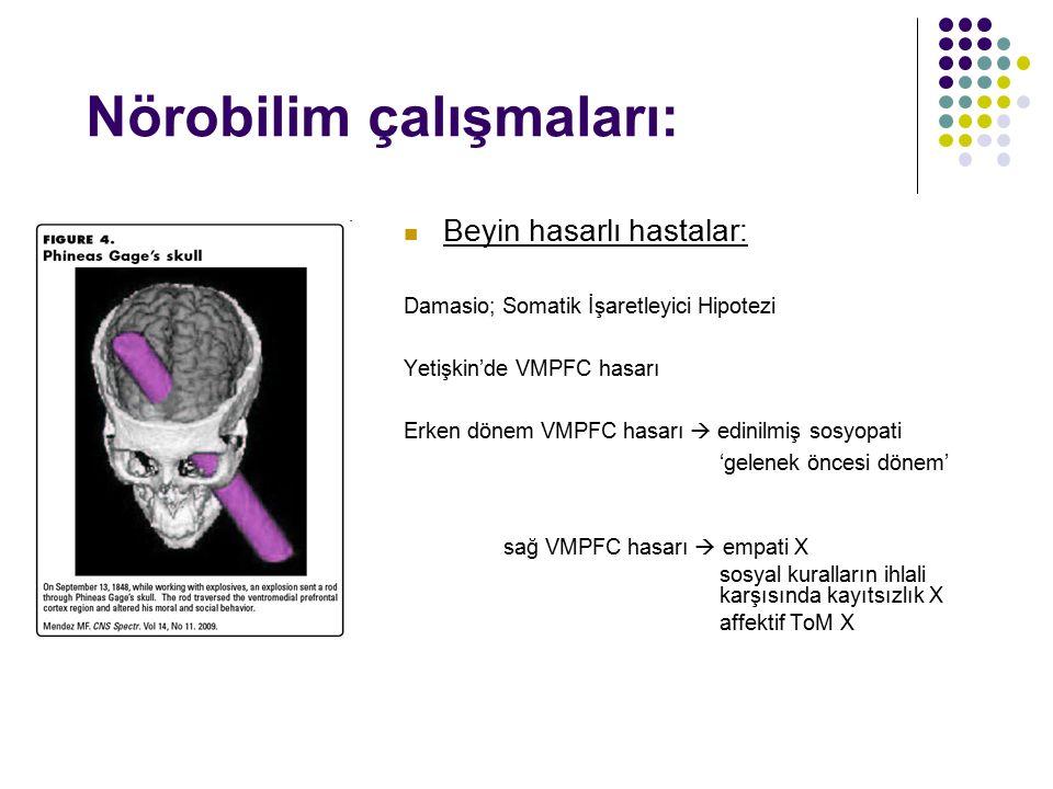 Nörobilim çalışmaları: