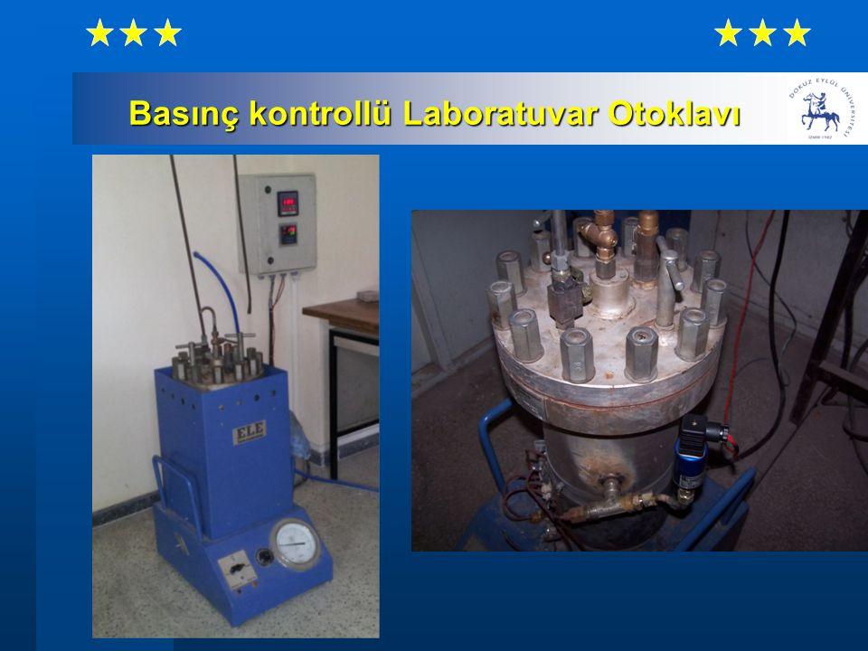 Basınç kontrollü Laboratuvar Otoklavı