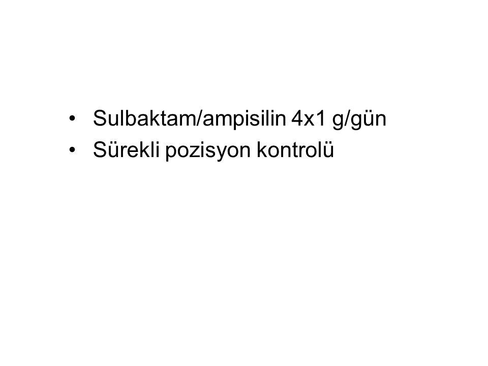 Sulbaktam/ampisilin 4x1 g/gün
