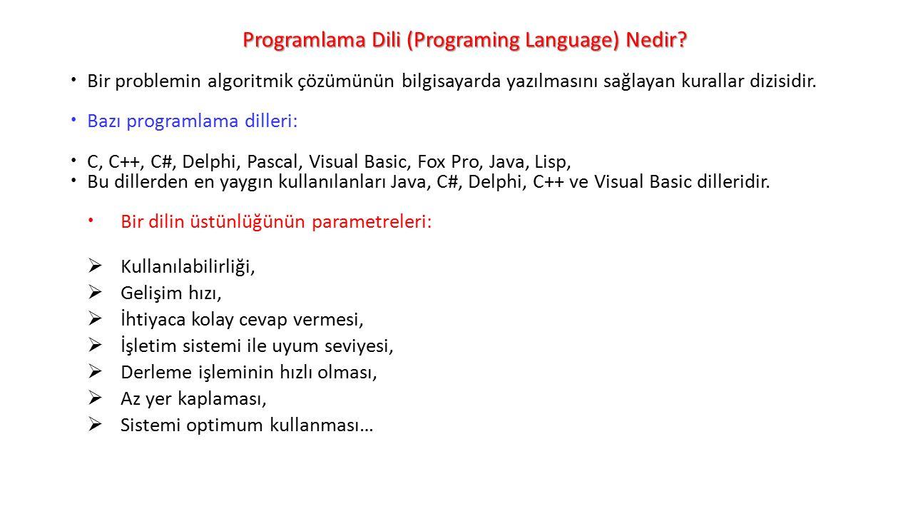 Programlama Dili (Programing Language) Nedir