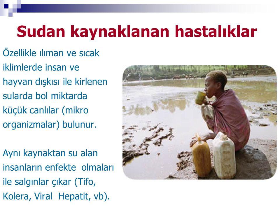 Sudan kaynaklanan hastalıklar