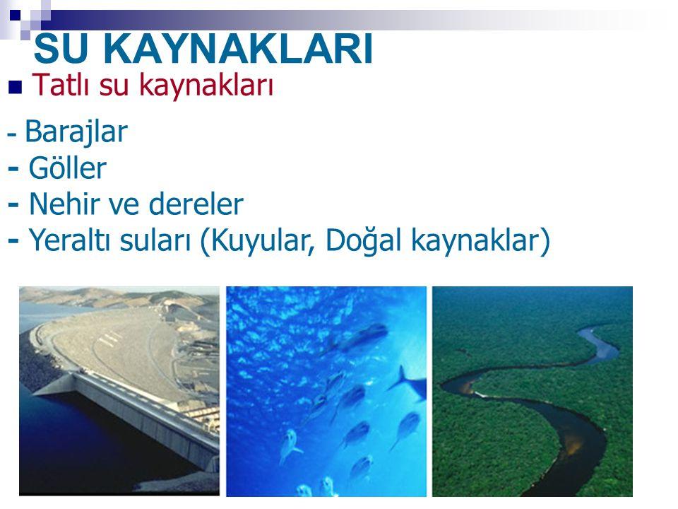 SU KAYNAKLARI Tatlı su kaynakları - Barajlar - Göller