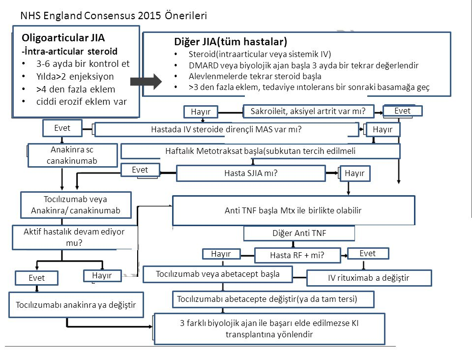 NHS England Consensus 2015 Önerileri