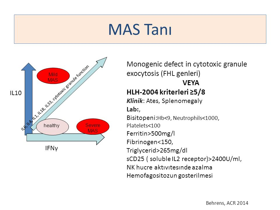 MAS Tanı Monogenic defect in cytotoxic granule