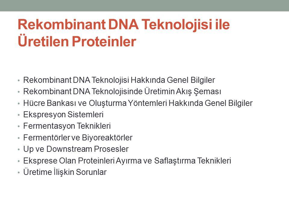 Rekombinant DNA Teknolojisi ile Üretilen Proteinler