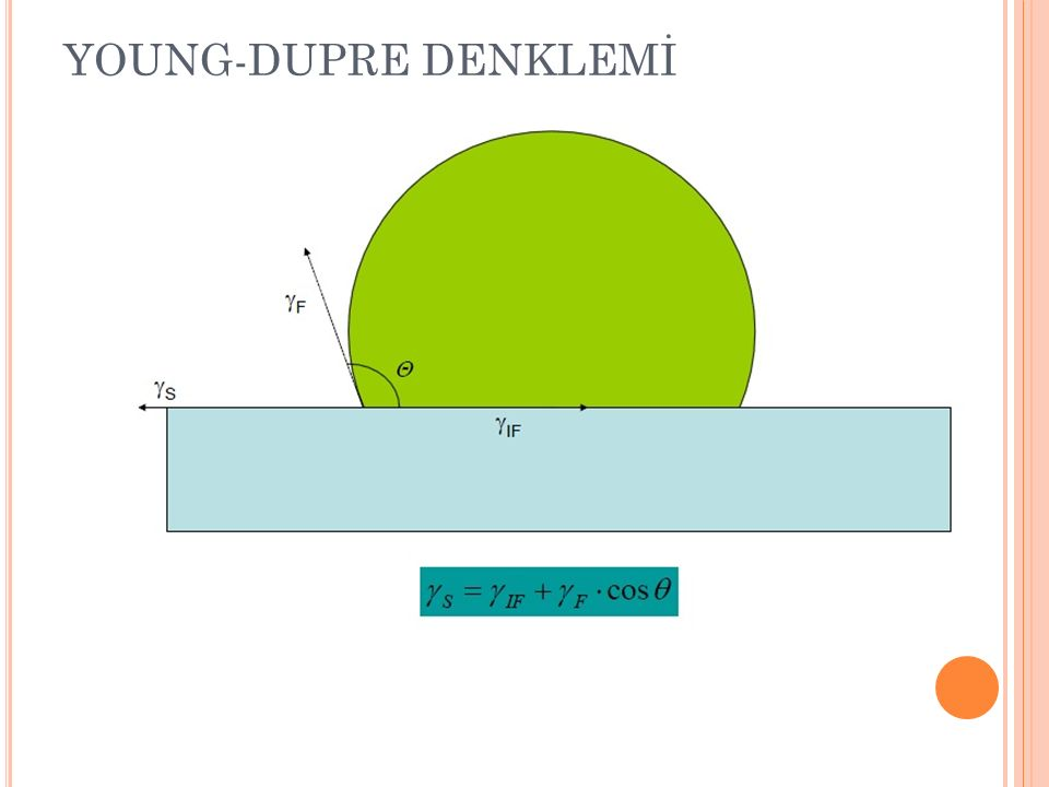 YOUNG-DUPRE DENKLEMİ