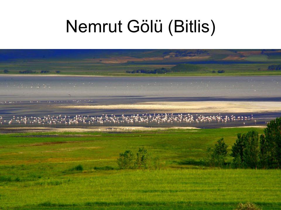 Nemrut Gölü (Bitlis)