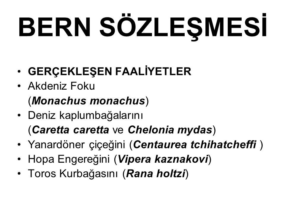 BERN SÖZLEŞMESİ GERÇEKLEŞEN FAALİYETLER Akdeniz Foku