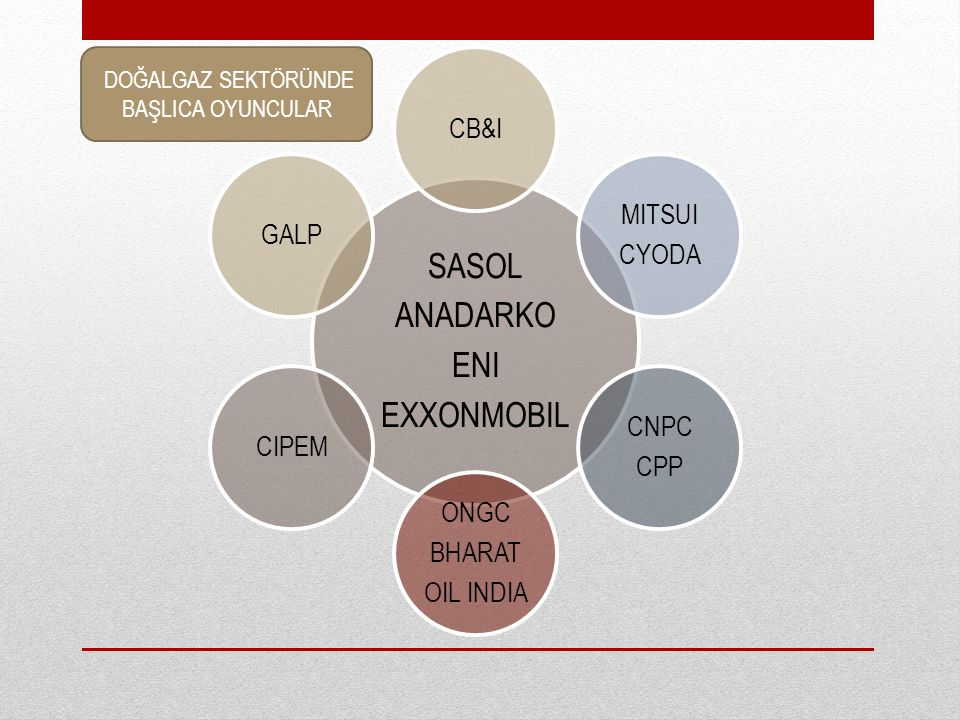 SASOL ANADARKO ENI EXXONMOBIL CB&I MITSUI GALP CYODA CNPC CIPEM CPP