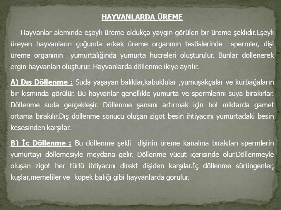 HAYVANLARDA ÜREME