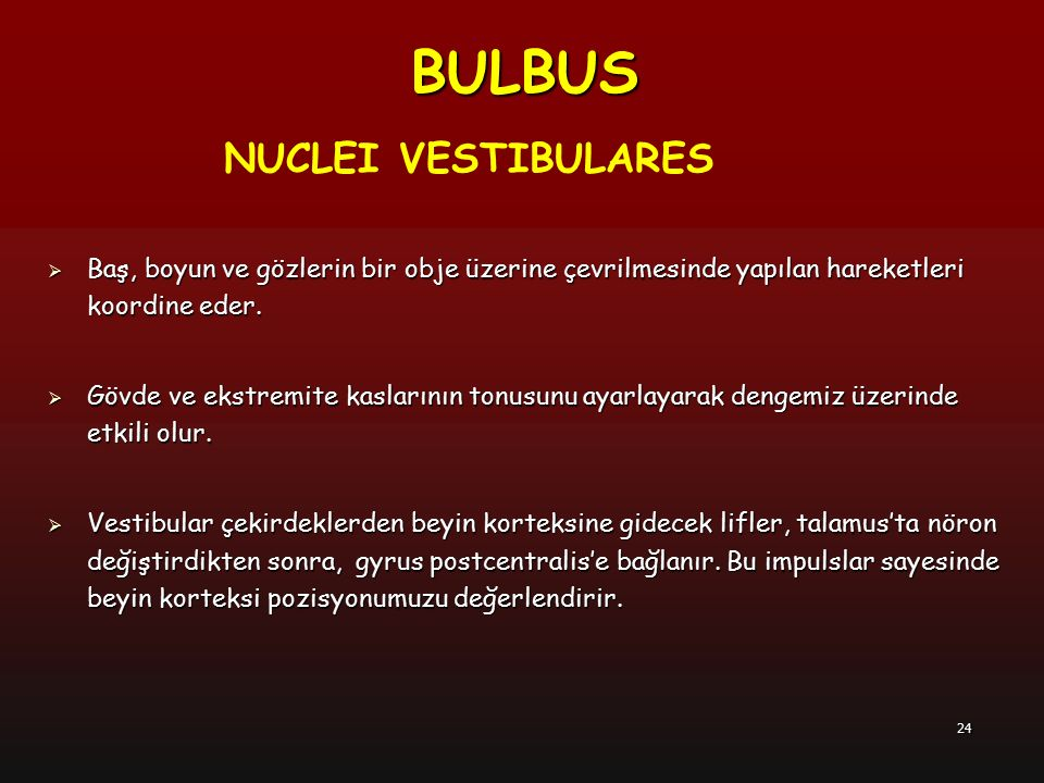 BULBUS NUCLEI VESTIBULARES
