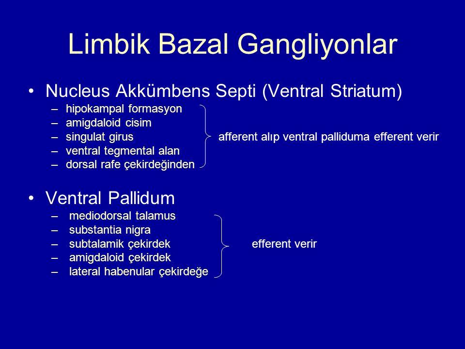 Limbik Bazal Gangliyonlar
