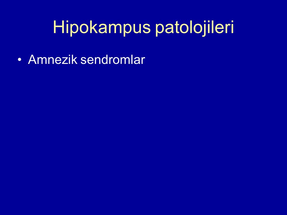 Hipokampus patolojileri