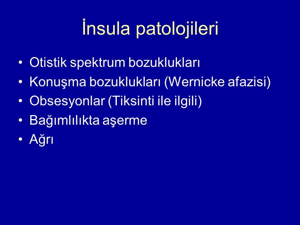 İnsula patolojileri Otistik spektrum bozuklukları