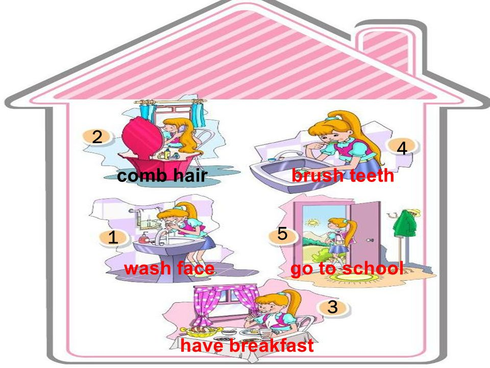 2 4 comb hair brush teeth 5 1 wash face go to school 3 have breakfast