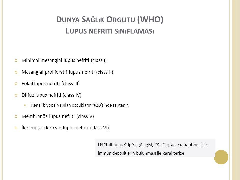 Dunya Sağlık Orgutu (WHO) Lupus nefriti sınıflaması