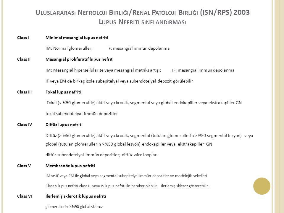 Uluslararası Nefroloji Birliği/Renal Patoloji Birliği (ISN/RPS) 2003 Lupus Nefriti sınflandırması