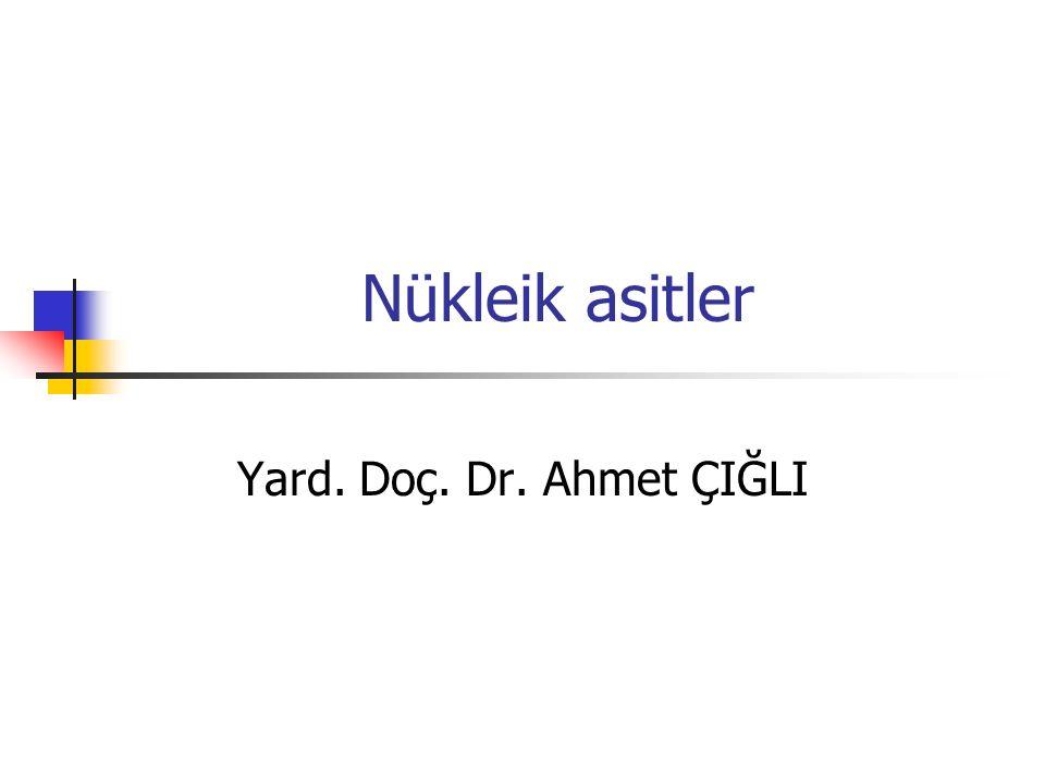 Nükleik asitler Yard. Doç. Dr. Ahmet ÇIĞLI