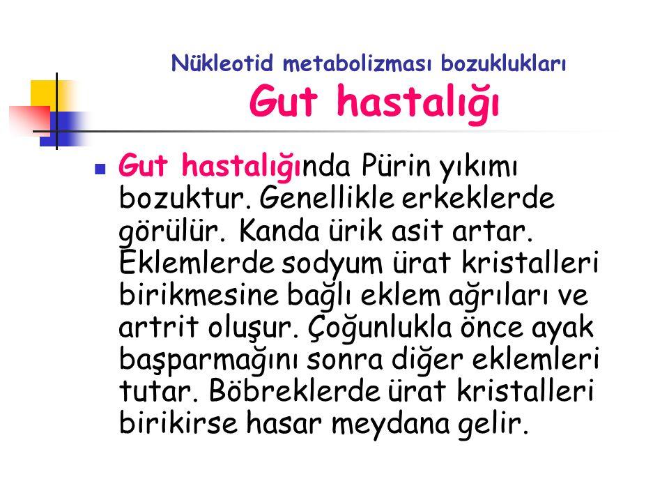 Nükleotid metabolizması bozuklukları Gut hastalığı