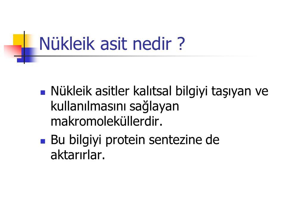 Nükleik asit nedir Nükleik asitler kalıtsal bilgiyi taşıyan ve kullanılmasını sağlayan makromoleküllerdir.