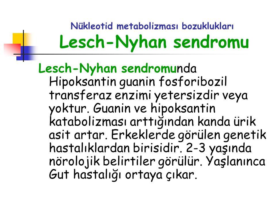 Nükleotid metabolizması bozuklukları Lesch-Nyhan sendromu