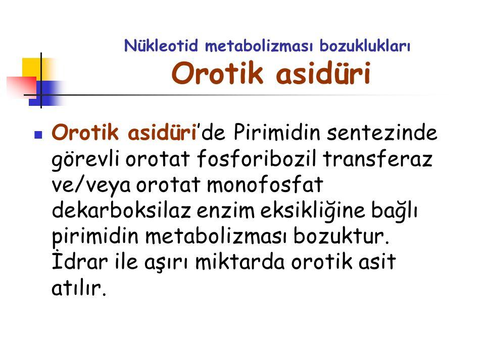 Nükleotid metabolizması bozuklukları Orotik asidüri