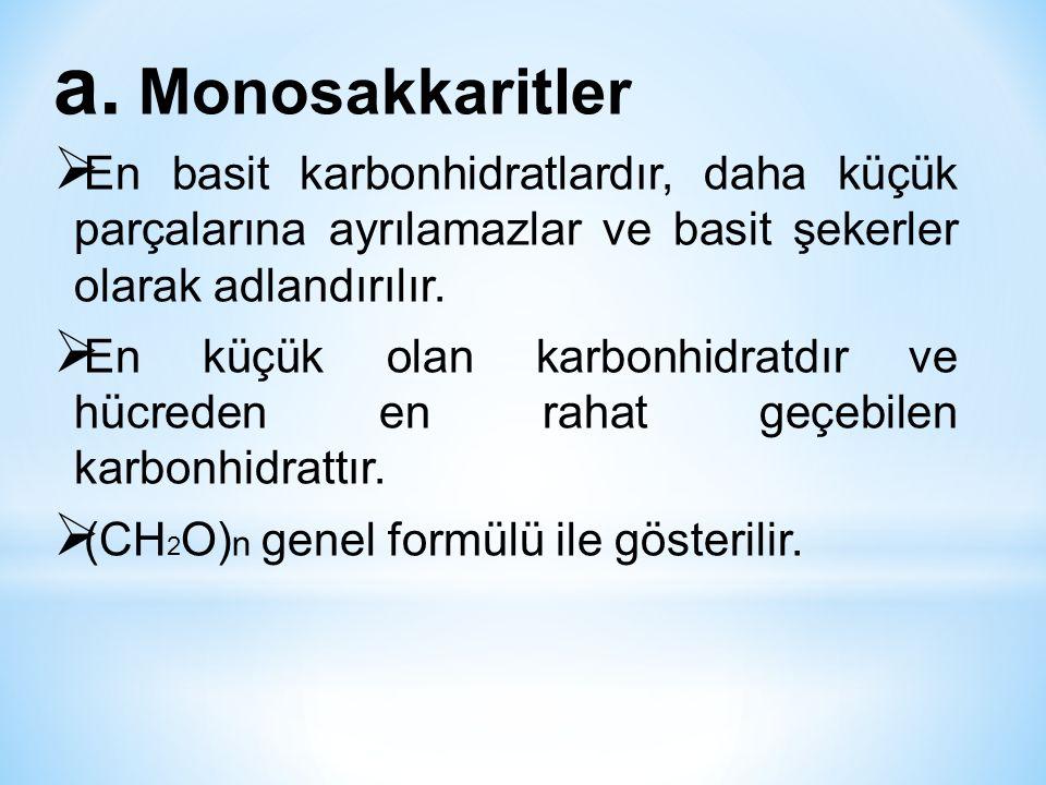 Monosakkaritler En basit karbonhidratlardır, daha küçük parçalarına ayrılamazlar ve basit şekerler olarak adlandırılır.