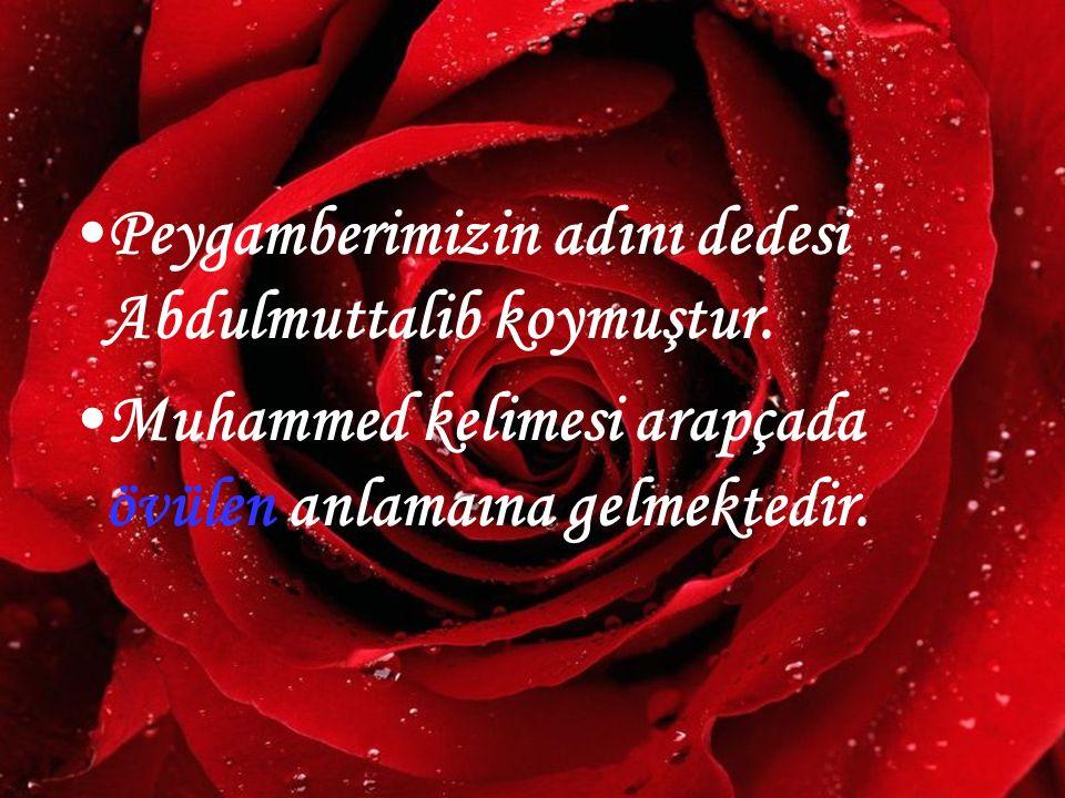 Peygamberimizin adını dedesi Abdulmuttalib koymuştur.