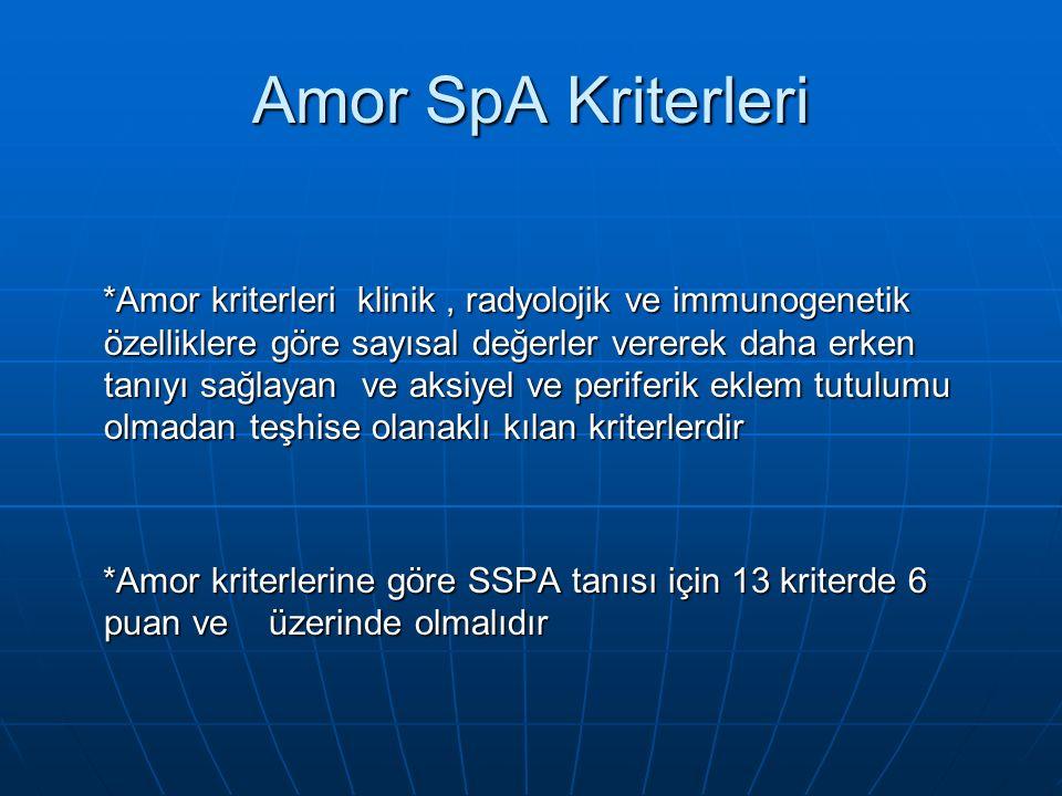 Amor SpA Kriterleri