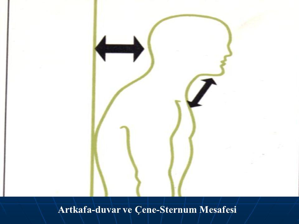Artkafa-duvar ve Çene-Sternum Mesafesi
