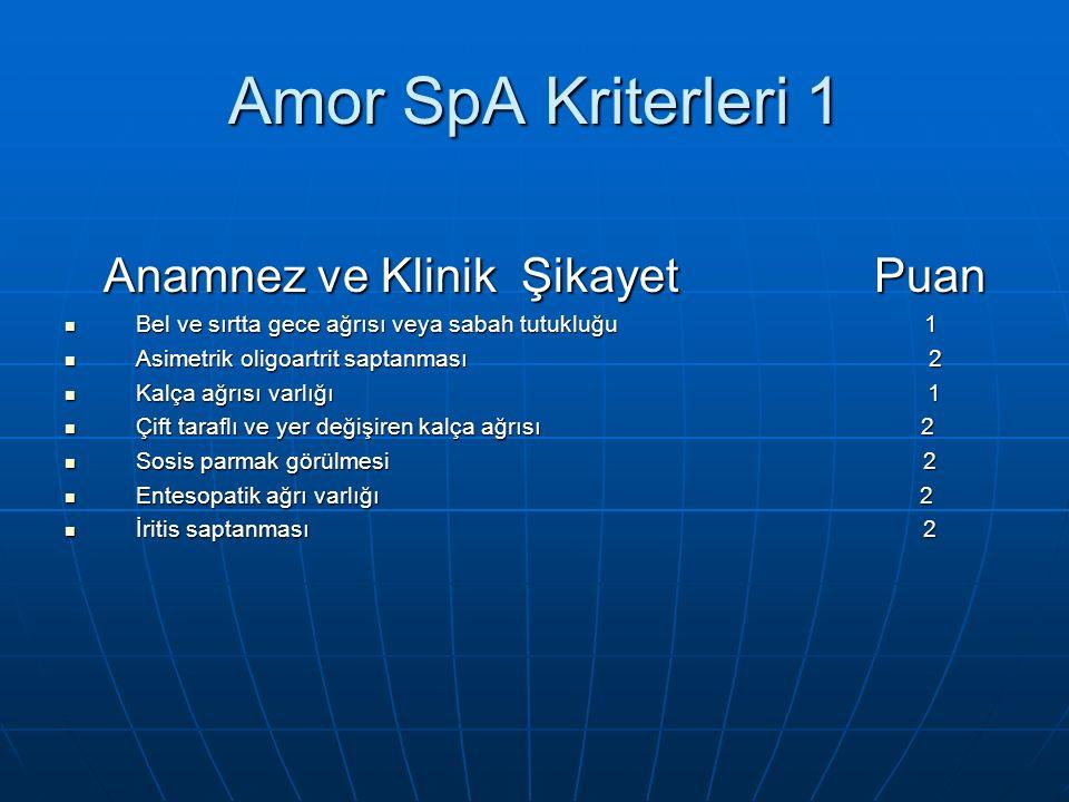 Amor SpA Kriterleri 1 Anamnez ve Klinik Şikayet Puan